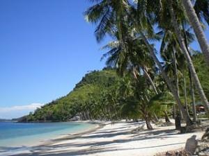 320px White sand in Sikuai island 300x225 Best White Sand Beach in South East Asia, Trikora Beach