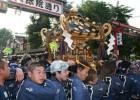 Visit Sanja Matsuri, Popular Japanese Festival