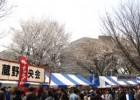 Sakura Festival of Nagasaki Kunchi State
