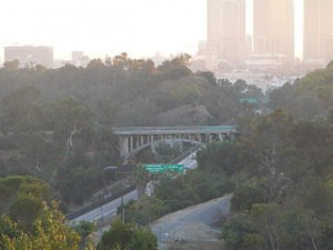 SR 110 south Academy Road exit from Elysian Park 300x225 Exploring The Wildest Side of Downtown Los Angeles