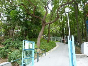 Central Kwai Chung Park 300x225 Where Go To in Hongkong ? The Central Kwai Chung Park is Good Ideas