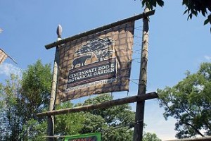 Cincinnati Zoo 300x200 Must Visit USA Zoo Ideas That Have a Cute Animals Baby