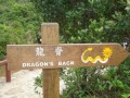 Best Exciting Adventure Places in Hongkong, The Dragons Back Hike