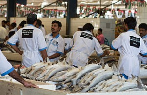 Dubai Fish Market 02 300x195 Alternative Holiday Travel in Dubai, Traditional Markets Beside Burj Khalifa