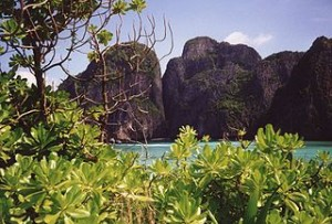 Ko Phi Phi Lee 300x203 Enjoy the beauty and the beauty of Southern Thailand