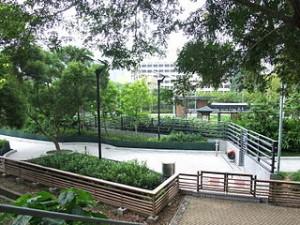 Tung Chung North Park Pet Garden Hong Kong 300x225 Tung Chung North Park, Beauty of Natural Exhibition in Hong Kong