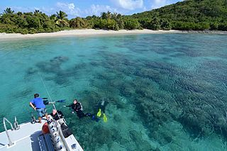 Diving Culebra Sky Diving in Luxury Cruise Ship