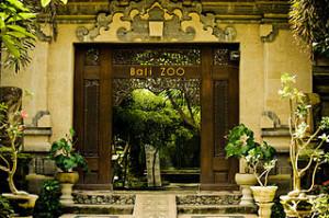 Bali Zoo 300x199 Sukawati Art Market and Guwang