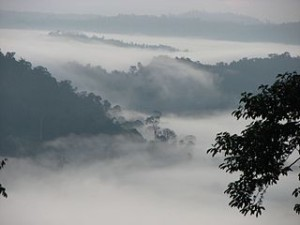 Sunrise in Danum Valley Borneo 300x225 Where to Go Malaysia, Must Visit Places in Sabah