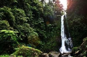 waterfall bali indonesia 300x199 Singsing Waterfalls