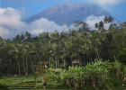 Awesome View of Bali Trekking