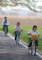 Hanami cycling Cycling Tour Across Bali