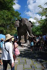bali elephant safari Amazing Balinese Elephant Safari