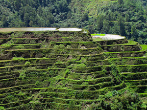 Banaue RiceTerraces 300x225 Popular Travel Destinations in Banaue