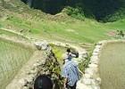 Dark stories about Batad Village