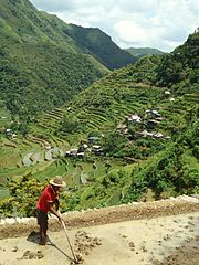 Batad Rice Terraces Banaue Ifugao Amazing Architectural House of Batad