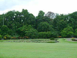 Bogor Botanical Garden Alternative Nature Places Around the Bogor