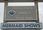 Little Mermaid in Newton Perry Theater, Weeki Wachee Springs