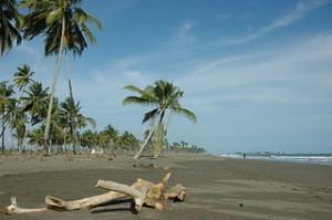 Batu_Putih_Beach_Meulaboh