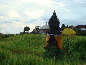 Batukaru1