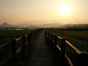 Suncheon_Bay