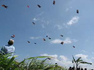Bali_Kite_Festival