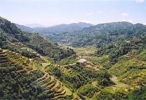 Rice_Terraces_Banaue