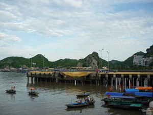 Cat Ba Island Vietnam Tours
